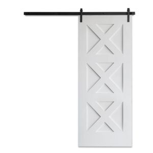 Contemporary Panel Barn Door
