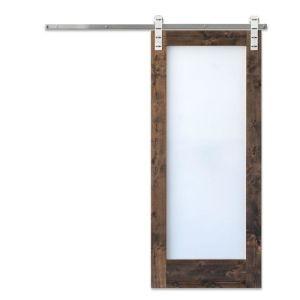Modern Glass Barn Door