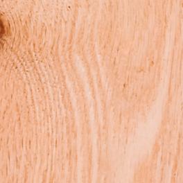 sample piece of red oak wood