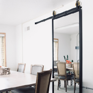 Mirror Barn Doors