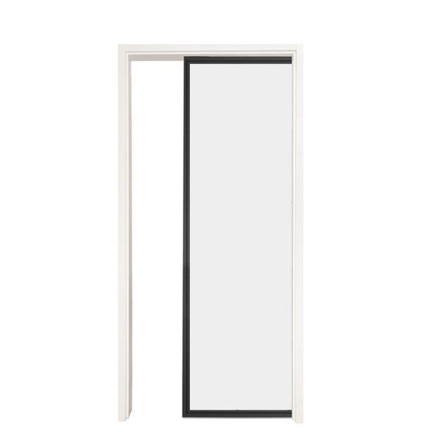 Suite Single Pocket Door