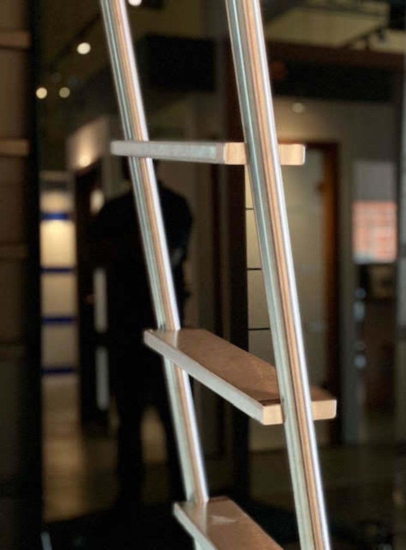 Rebel Library Ladder