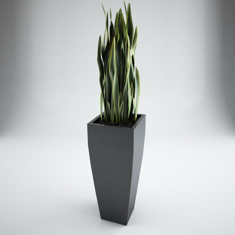 Modern Tapered Planter Box