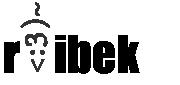 rvibek 2013