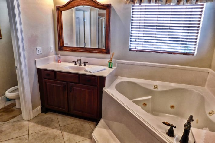 Additional View of Master Bathroom with Large Tub
