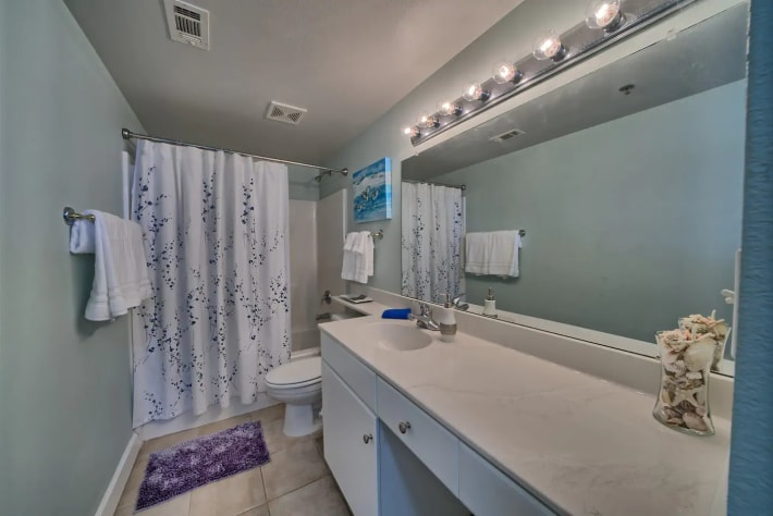 Beautiful Full Bath with added door for privacy, huge mirror & Rain Showerhead
