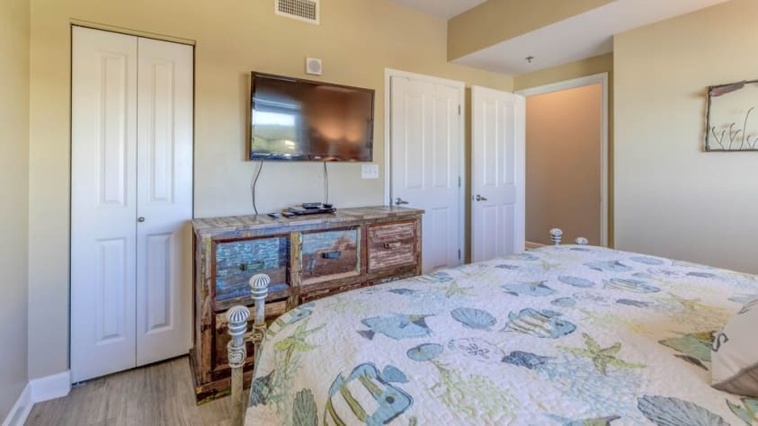 TV and closet in Master bedroom
