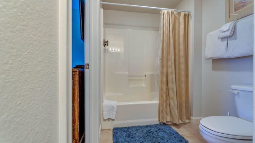 Shower/ tub combo in Master Bathroom