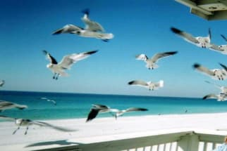 Destin Area Vacation Rental 2142