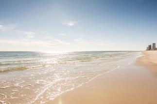 Gulf Shores Vacation Rental 981