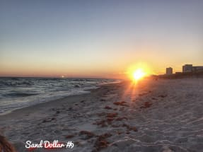 Gulf Shores Vacation Rental 981