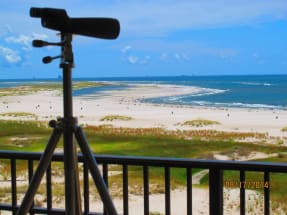 Dauphin Island Vacation Rental 1151