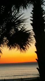 Shores of Panama #106 - Thumbnail Image #9