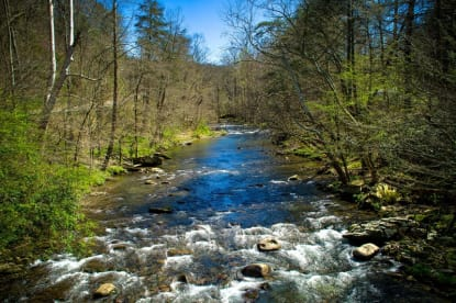 Riversong - Gatlinburg, TN Cabin Rental (1)