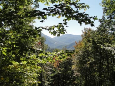 Maggie Valley Private Properties - Maggie Valley, NC House Rental (1)