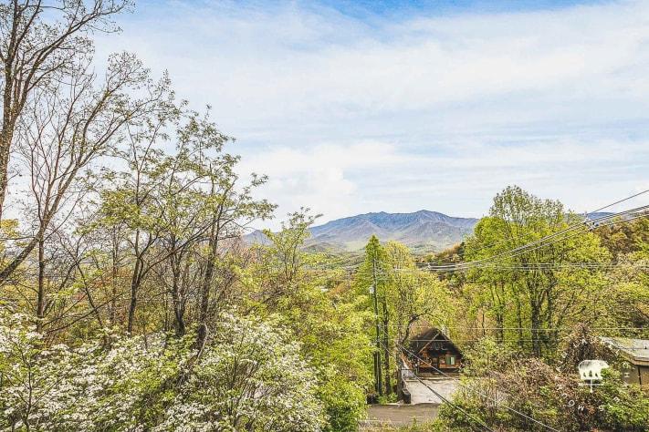 Gatlinburg, Tennessee Chalet Rental - Gallery Image #3