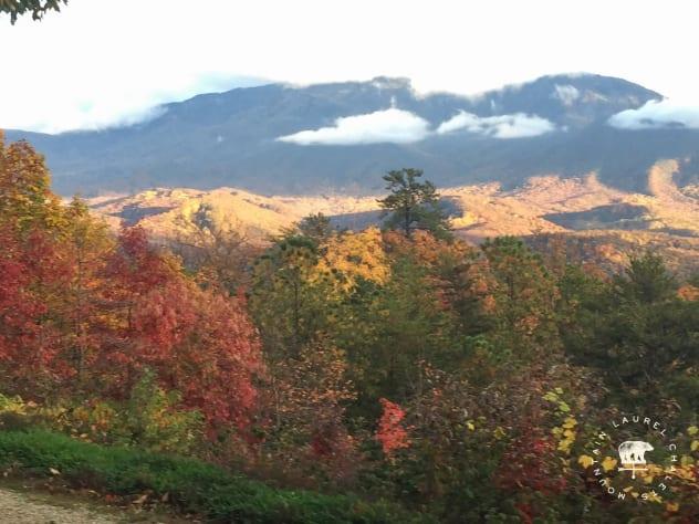 Gatlinburg, Tennessee Cottage Rental - Gallery Image #10