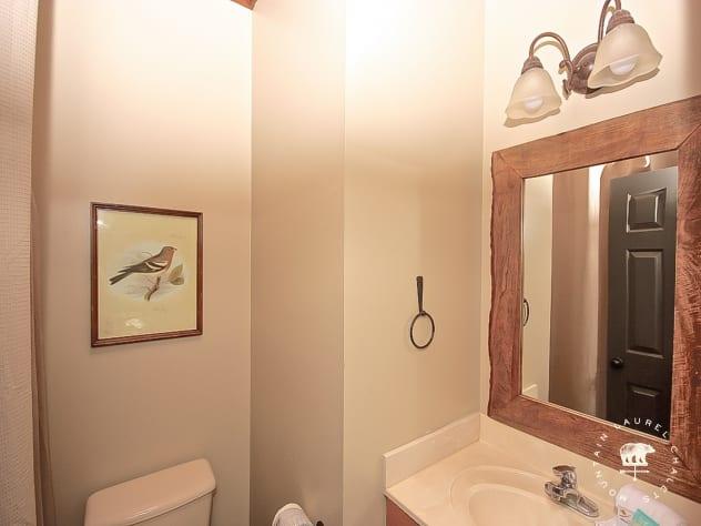 Gatlinburg, Tennessee Chalet Rental - Gallery Image #23