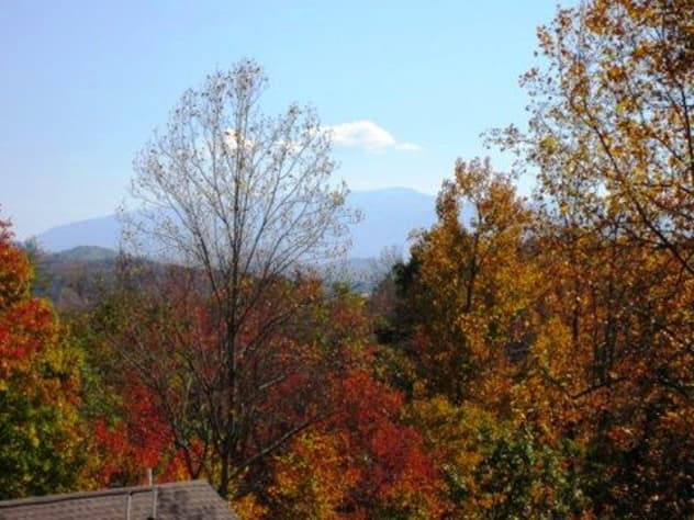 Pigeon Forge, Tennessee Duplex Rental - Gallery Image #14