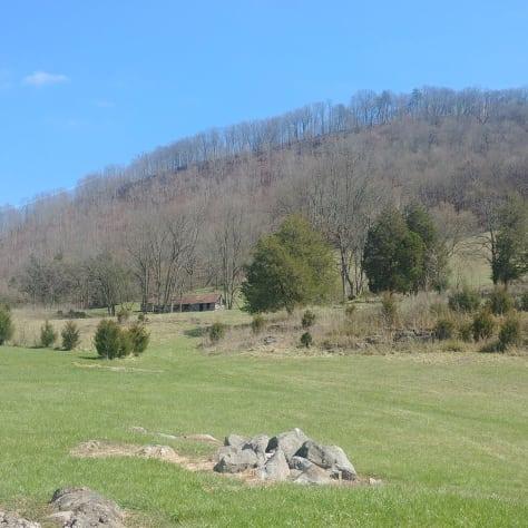 Rogersville, Tennessee Cabin Rental - Gallery Image #7
