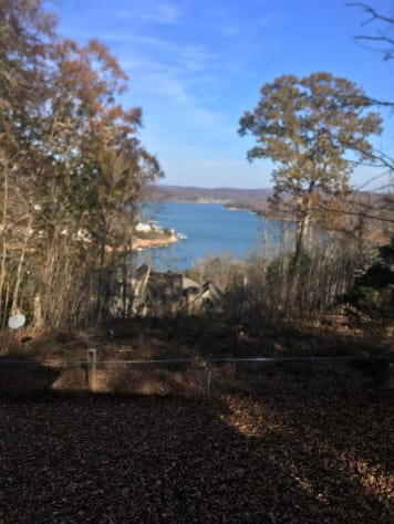 Norris Lake, Tennessee House Rental - Gallery Image #4