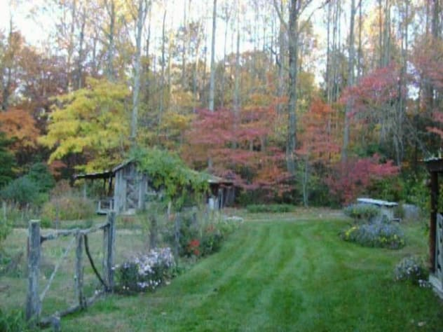 Cosby, Tennessee Cabin Rental - Gallery Image #19