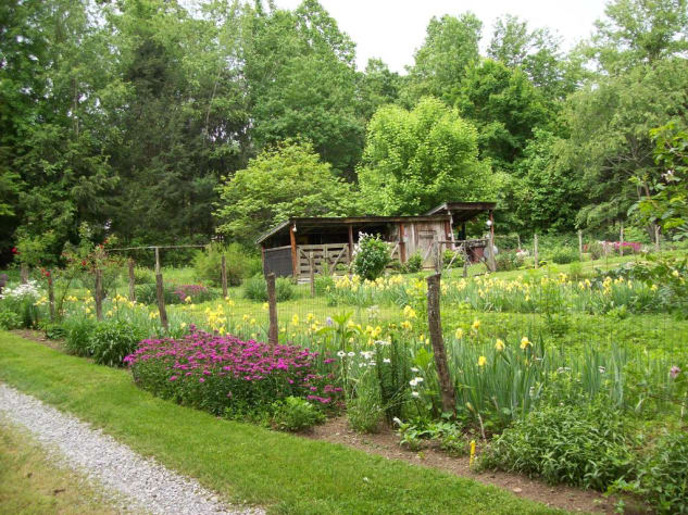 Cosby, Tennessee Cabin Rental - Gallery Image #18