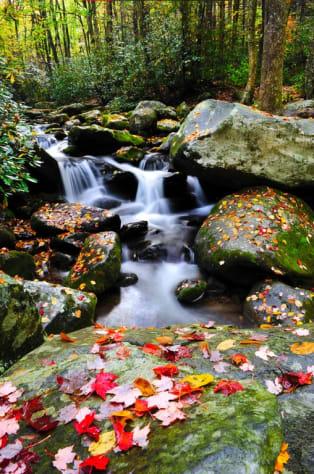 Gatlinburg, Tennessee Condo Rental - Gallery Image #19