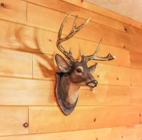 Sevierville, Tennessee Cabin Rental - Gallery Image #16