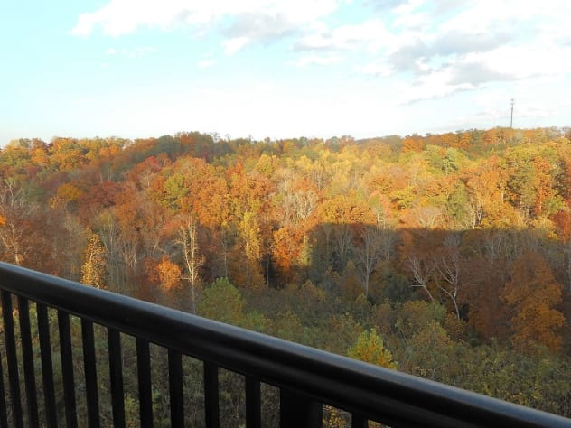 Pigeon Forge, Tennessee Condo Rental - Gallery Image #15