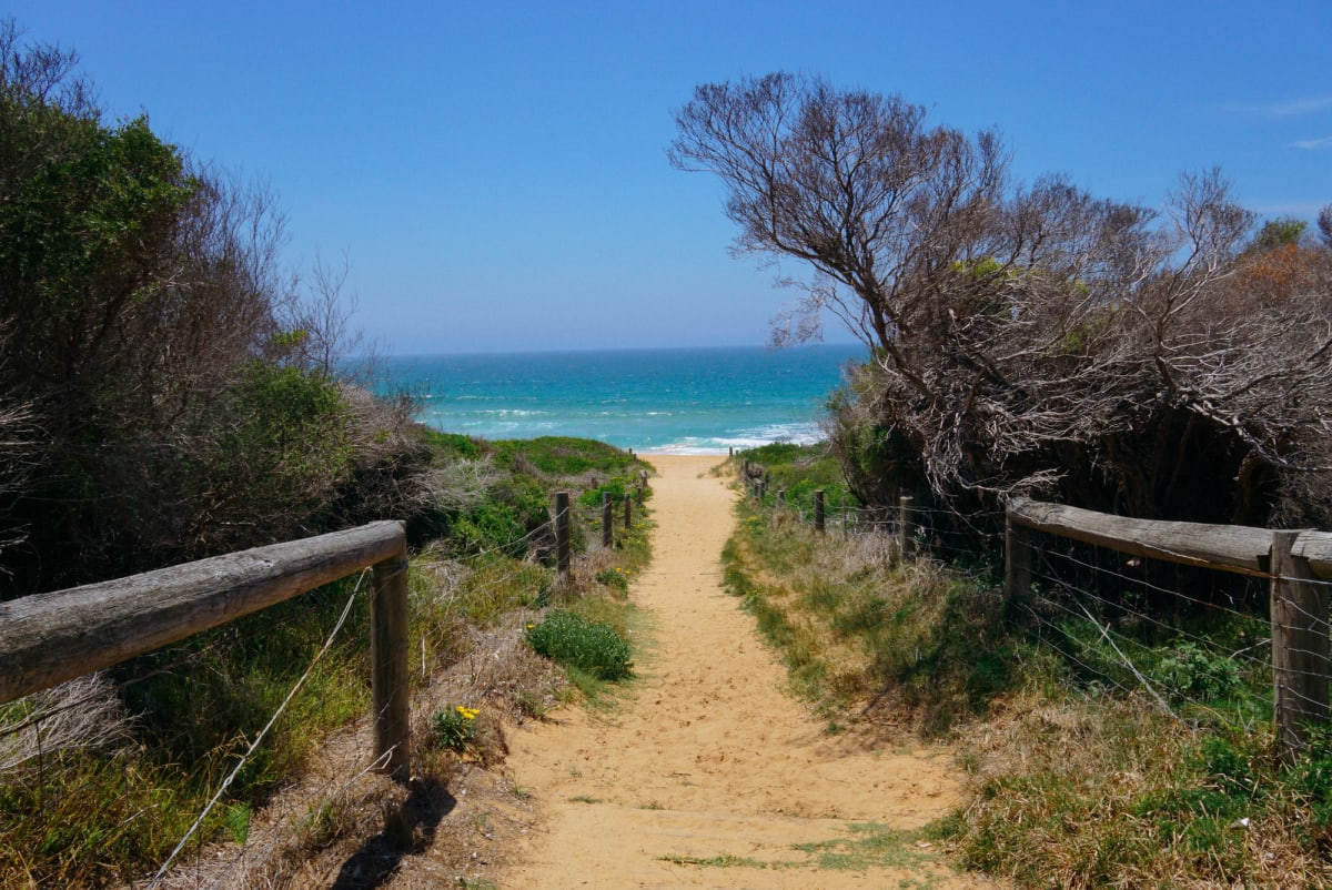 A track leading to another beach