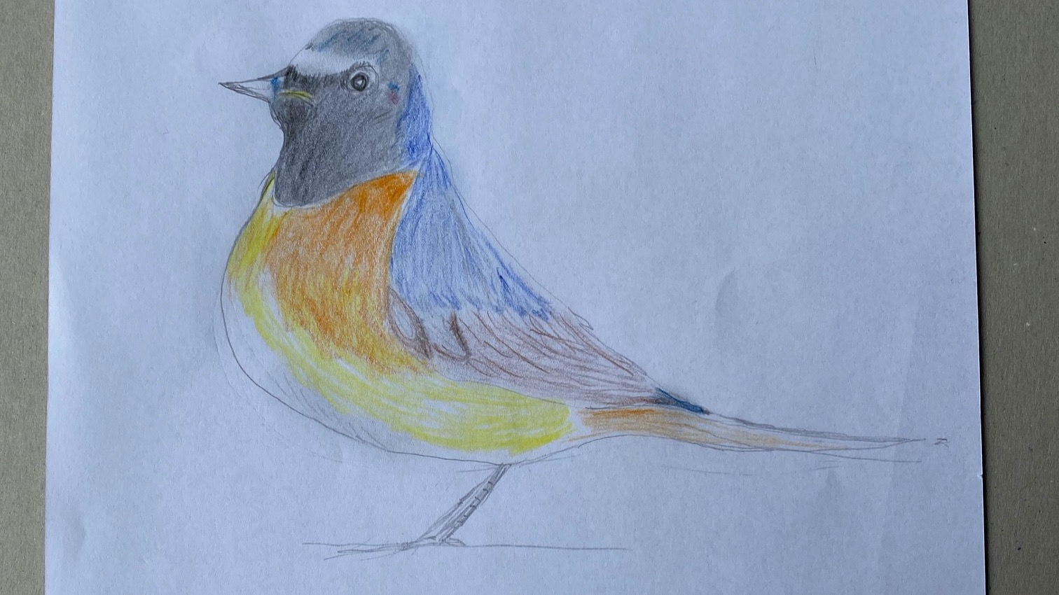 Ein selbstgemalter Vogel