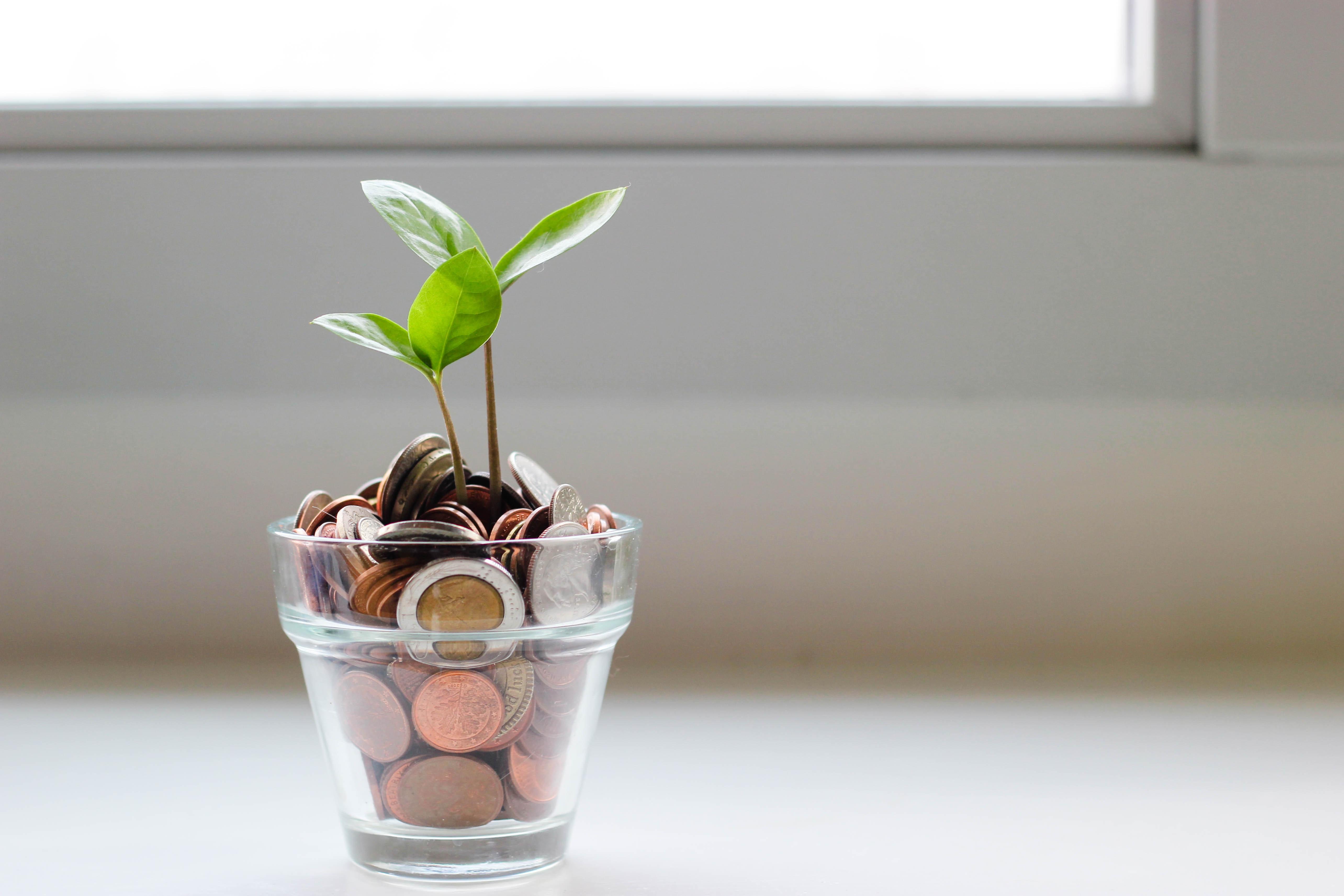 Nachhaltigkeit und Finanzen - das schließt sich nicht zwingend aus!