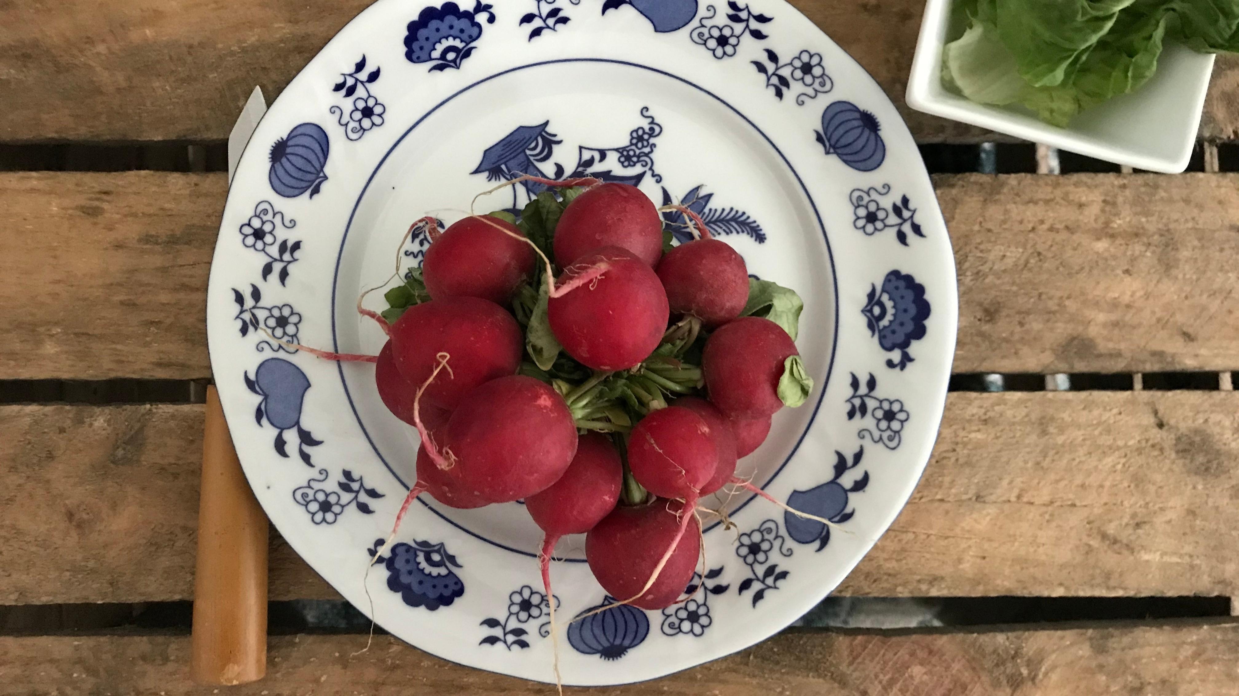 Besonders lecker sind Radieschen in einem Salat, als Brotbelag oder als gesunder Knabberspaß für zwischendurch. (Foto: Laura Buschhaus/BUND BW)