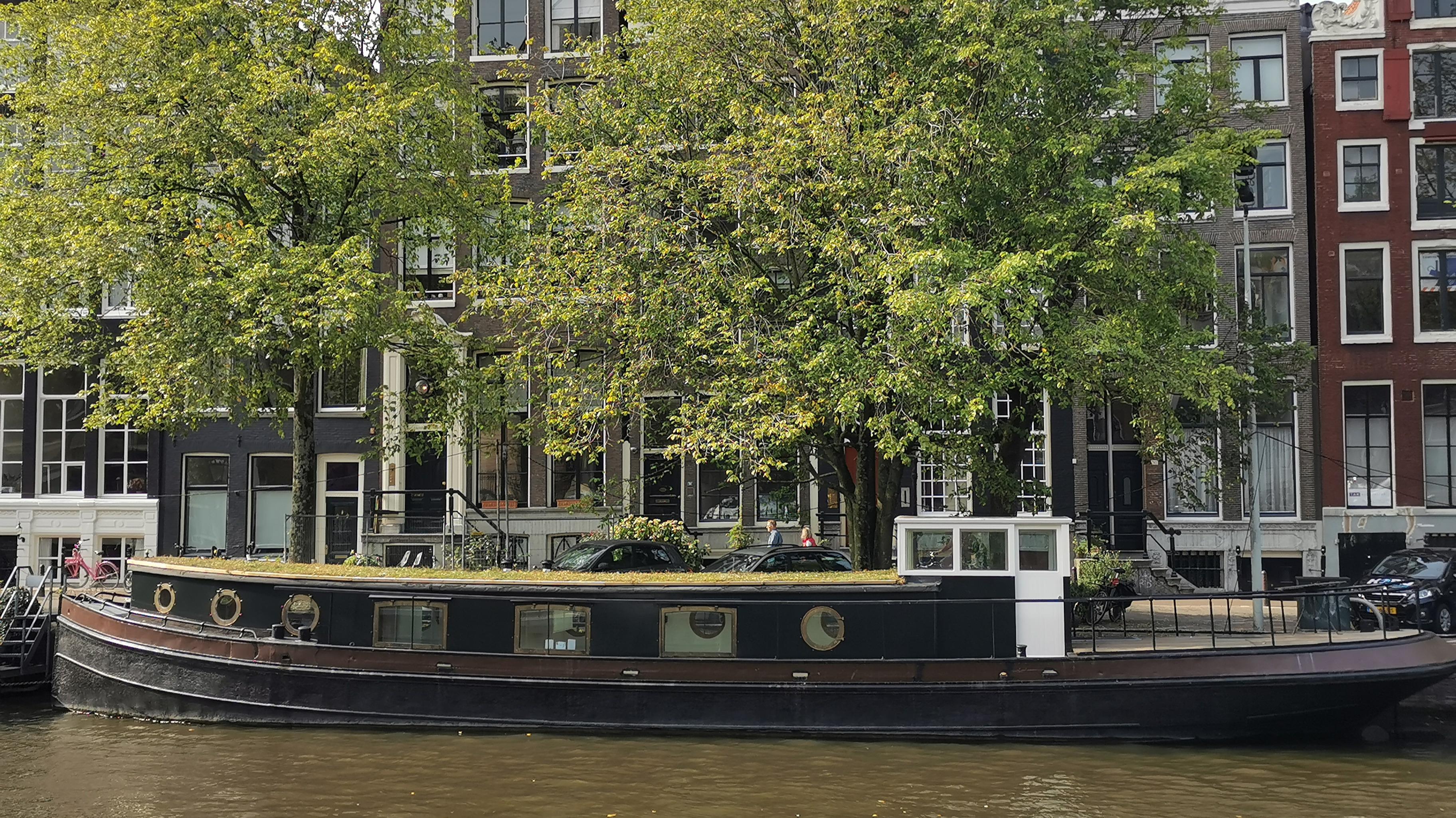 Kluge Wasserführung und Grün reduziert Hitze und Starkregenfolgen. Hier: Dachbegrünung - auf einem Boot in Amsterdam.