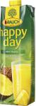 Happy Day Ananas-Saft 100%