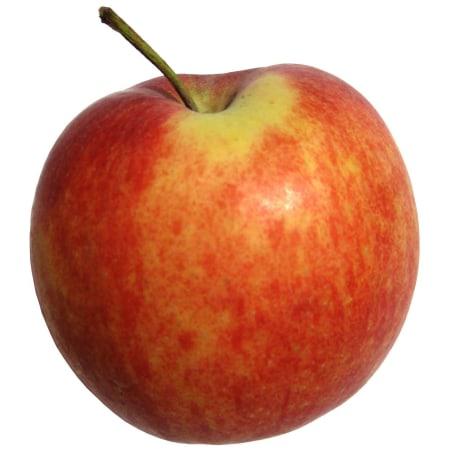 Gala Apfel ca. 1 Stück