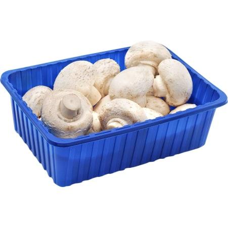Champignons 500 gr