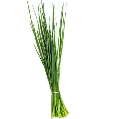 Gemüsier Schnittlauch