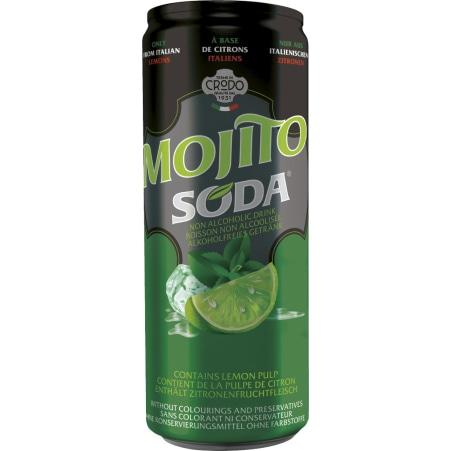 Terme di Crodo Mojito 0,33 Liter Dose