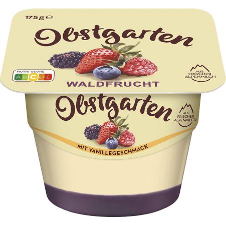 Danone Obstgarten Vanillegenuss Waldbeere