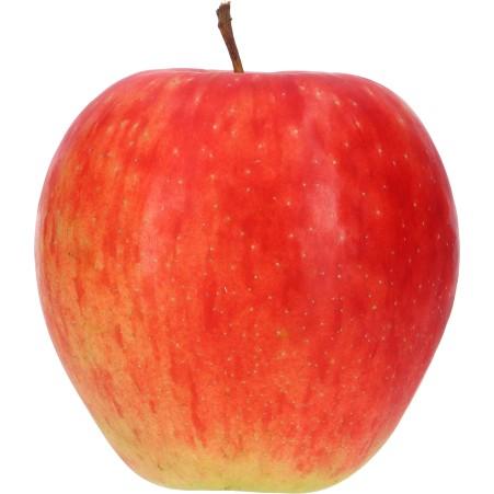 Arlet Apfel ca. 1 Stück