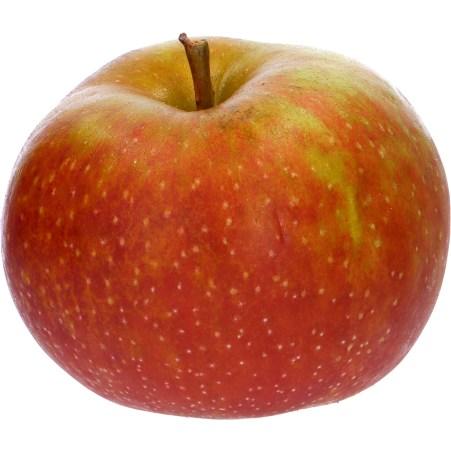 Boskoop Apfel ca. 1 Stück