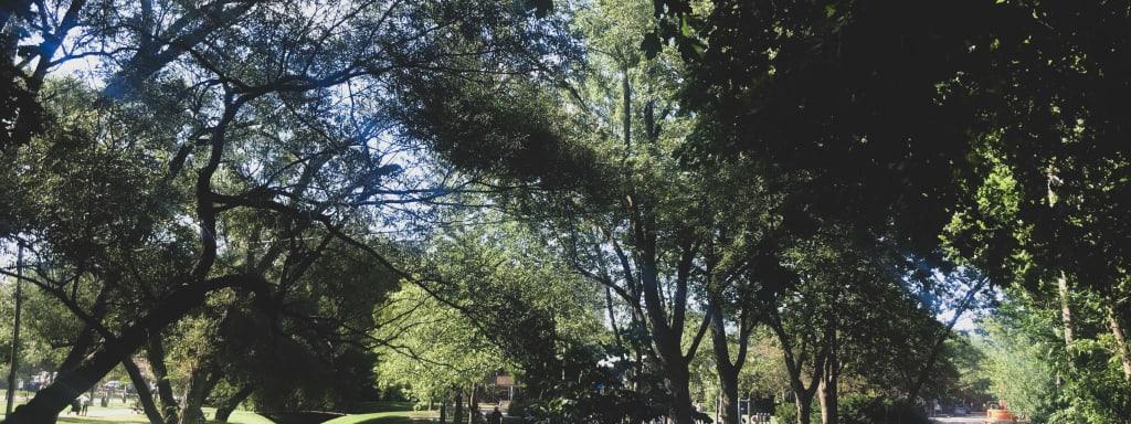 Ledbury Park