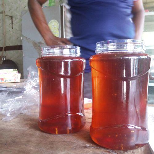 Sundarban of Honey