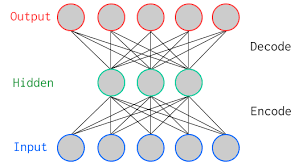 A typical autoencoder network
