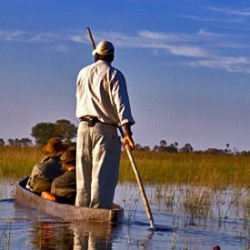 Botswana safari's