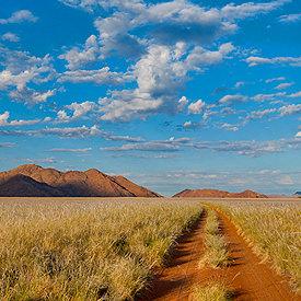Namibië safari's