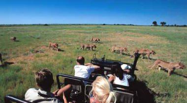 13-daagse groepsreis Tanzania & Kenia
