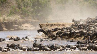 16 daagse groepsreis Tanzania & Zanzibar